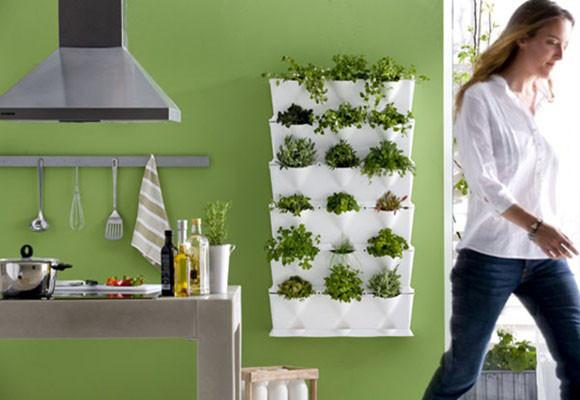 Cultivar hierbas arom ticas en casa decoraci n dise o for Plantas aromaticas para cocinar