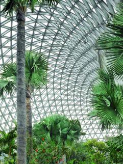 Jardín Botánico de Chenshan, en Shanghái (China), del estudio alemán Auer+Weber+Assoziierte. Arquitectura paisajística en la que un círculo a modo de anilla acoge las diferentes áreas del jardín. ROLAND HALBE