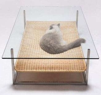 Ideas para que los fanáticos de las mascotas adapten sus casas