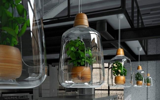 Ingeniosas lámparas diseñadas para ofrecer más luz a plantas de interior