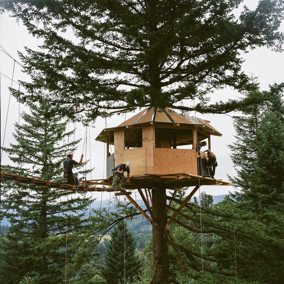 Una casa del árbol que tiene hasta WiFi