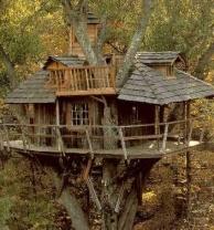 Casas en el árbol el sueño de todo niño se puede hacer realidad